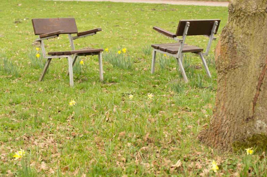 Botanischer Garten April 2013