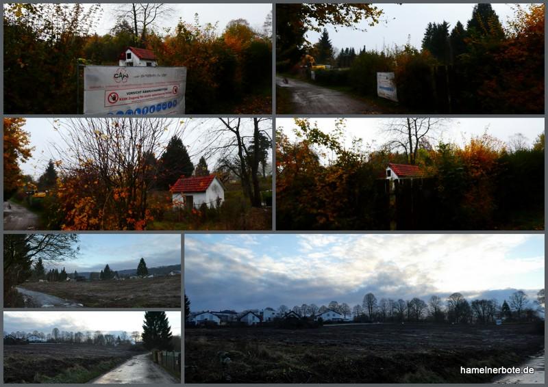 Apenberg/Riesackweg: Lebensräume zerstören um Lebensräume zu schaffen.