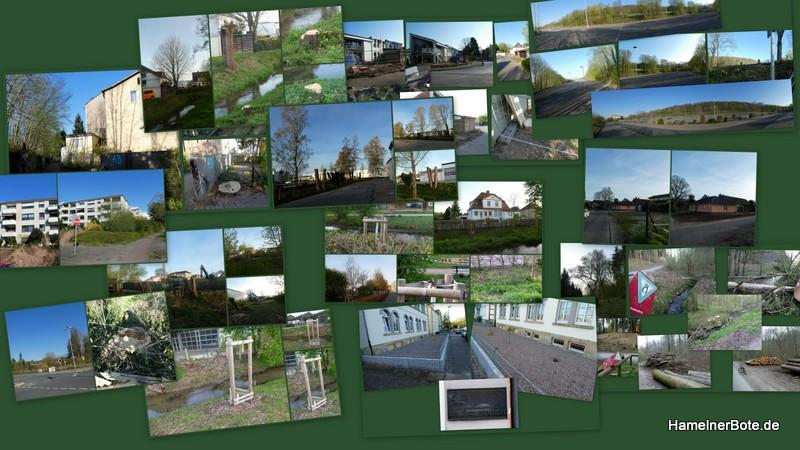 Baum-tot! Jeder Einzelfall hat seinen Grund. Die Summe aber macht die Veränderung für das gesamte Stadtbild!