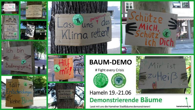 Bilder- und Infosammlung Baumdemo 19./20./21.06.2020 – Innenstadt Hameln