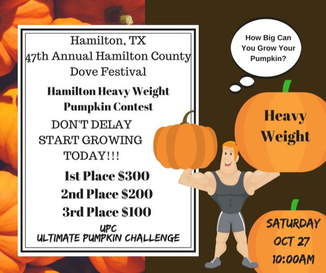 Hamilton Heavy Weight Pumpkin Contest