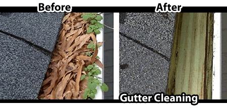 Hamilton_Gutter_Cleaning