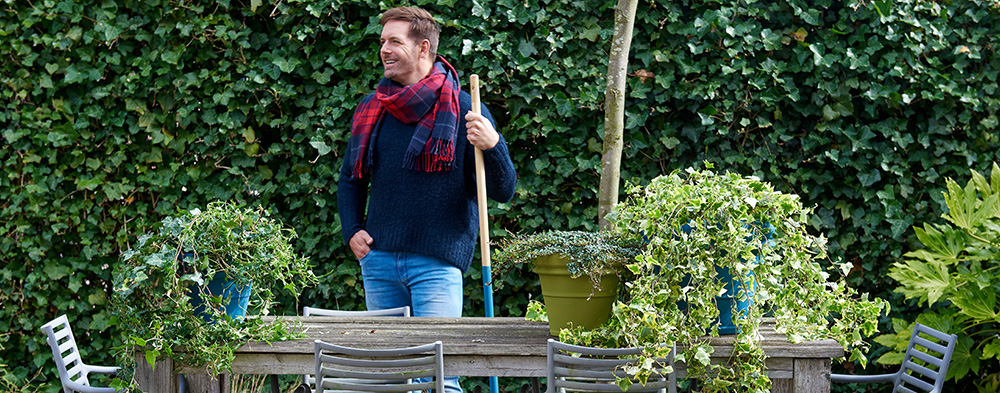 Garden Plant of the Month for March: Ivy