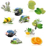 Kits AROMES et FRAGRANCES