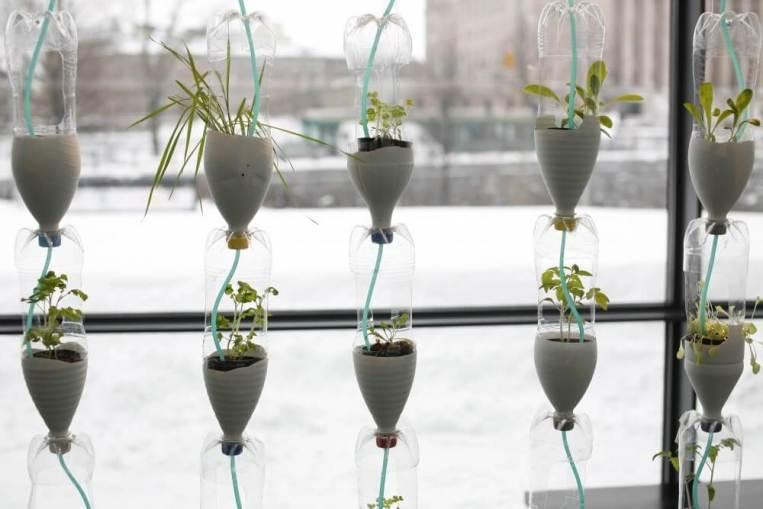 kerajinan dari botol bekas, pot bunga dari botol bekas
