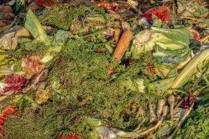 compost-3663514_1280.jpg