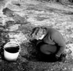 Diggers in action: Miss Margaret McFarlane, Curator of the Basingstoke Museum.