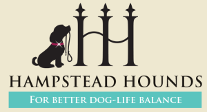 Hampstead Hounds Dog and Pet Care