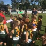 Hampton Rovers Juniors Under 9 Orange