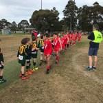 Hampton Rovers Juniors Under 9 Yellow