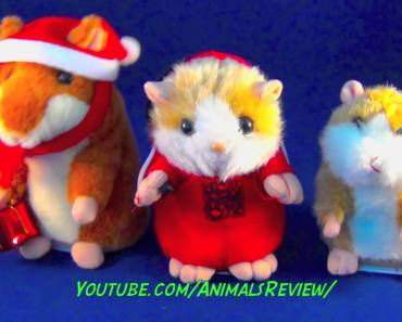 Funny Talking Hamsters Toys - 2 Mimicry Talking Hamsters and DJ Hamster Rapper - funny talking hamsters toys 2 mimicry talking hamsters and dj hamster rapper