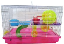 Hamster Cage & Habitat Facts