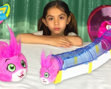 Hide and Seek Zhu Zhu Pets Hamster Surprise Toy Hunt Challenge with Minnie ToysReview - hide and seek zhu zhu pets hamster surprise toy hunt challenge with minnie toysreview