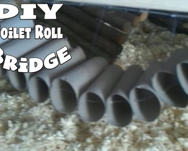 DIY TOILET ROLL HANGING BRIDGE | Hamster Toys DIY - diy toilet roll hanging bridge hamster toys diy