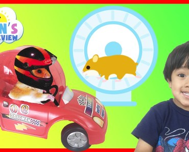 Hamster Pet first Toy Car Wheel and Exercise Ball kids video Ryan ToysReview - hamster pet first toy car wheel and exercise ball kids video ryan toysreview