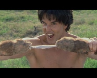 Best of Kung Pow! Enter the Fist - best of kung pow enter the fist