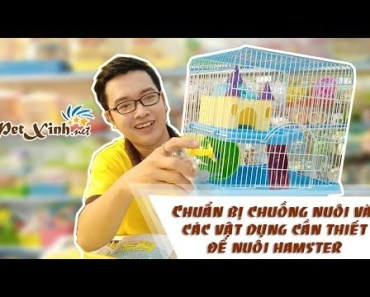 Hamster Winter White shop PetXinh.net, chuẩn bị chuồng nuôi và vật dụng cần thiết - hamster winter white shop petxinh net chuan bi chuong nuoi va vat dung can thiet