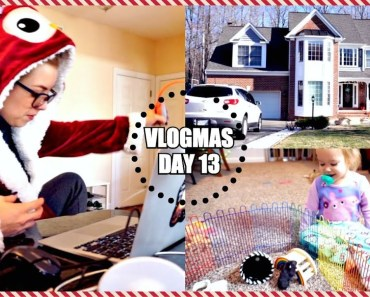 HOUSE TOUR | PLAYING WITH MY DWARF HAMSTER | Vlogmas - house tour playing with my dwarf hamster vlogmas