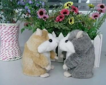 SteveKat - 'Come Fly With Me' - The Talking Hamster - SteveKat - stevekat come fly with me the talking hamster stevekat
