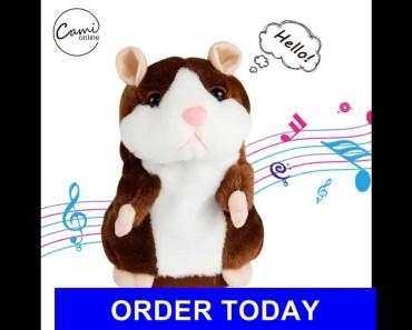 SteveKat - The Adventures of Hammy - The Talking Hamster - 'That's Nuts' - SteveKat - stevekat the adventures of hammy the talking hamster thats nuts stevekat