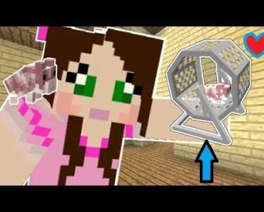 PopularMMOs Pat And Jen Minecraft LITTLE PETS!! HAMSTERS, HEDGEHOGS, FERRETS Mod Showcase - 1516896721 popularmmos pat and jen minecraft little pets hamsters hedgehogs ferrets mod showcase