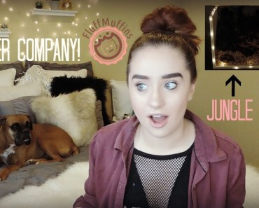 I'm Starting A Hamster Company!!! Hamster Cage Tour! - im starting a hamster company hamster cage tour