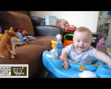 Talking Hamster Pet Toys So Funny - talking hamster pet toys so funny