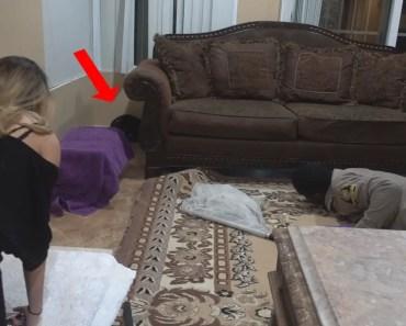 WE HAD TO CALL ANIMAL CONTROL!! (CRAZY FOOTAGE) | FaZe Rug - we had to call animal control crazy footage faze rug