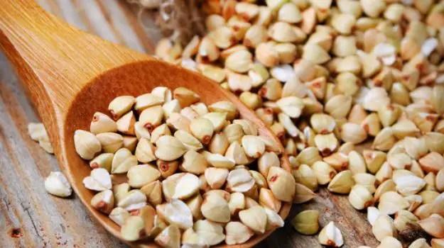Can Hamsters Eat Buckwheat groats?
