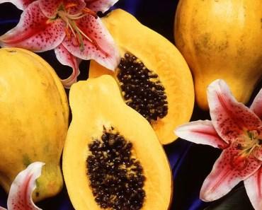 Can Hamsters Eat Papaya?