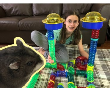 AWESOME HAMSTER MAZE! Made With Critter Trail Small Pet Tubes - awesome hamster maze made with critter trail small pet tubes