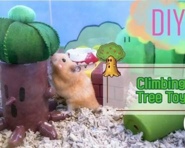 DIY | HAMSTER - Kirby Tree Climbing Toy - diy hamster kirby tree climbing toy