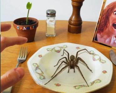 Eating a SPIDER!! Kluna Tik Dinner #43 - eating a spider kluna tik dinner 43