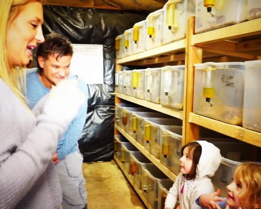 Theo Von visits a hamster ranch in Portland - theo von visits a hamster ranch in portland