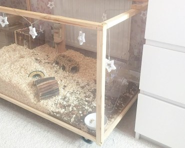 HAMSTER CAGE CLEANING & EXPLORING | Malica Hamilton - hamster cage cleaning exploring malica hamilton