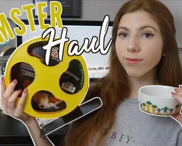 HAMSTER HAUL | new hamster wheels! - hamster haul new hamster wheels