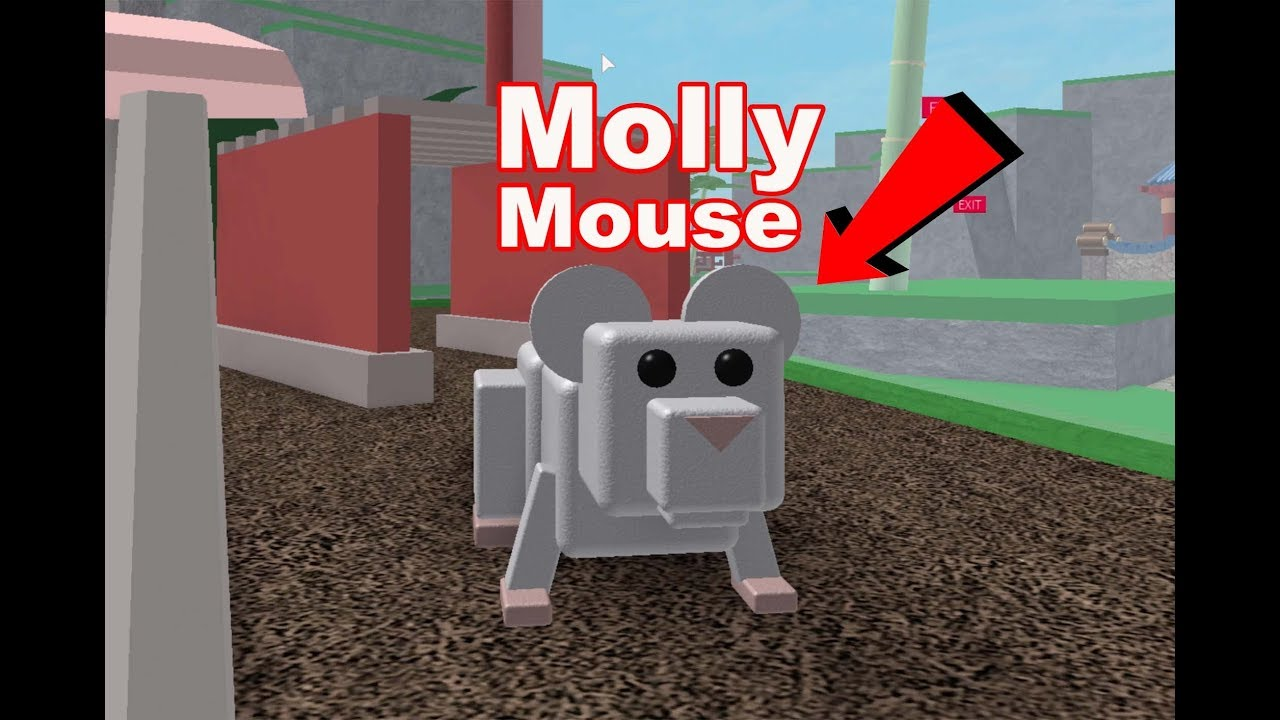 Roblox Pet Escape With Mouse Molly Hamster Care Sheet Guide