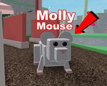Roblox Pet Escape With Mouse Molly! - roblox pet escape with mouse molly