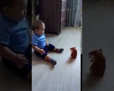 The Evil Hamster - the evil hamster