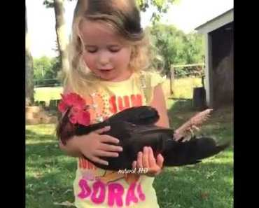 Funny clips to death with young children and animals - funny clips to death with young children and animals
