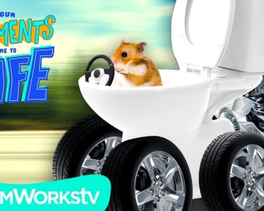 Hamster in a Toilet Car DESTROYS DABBING   YOUR COMMENTS COME TO LIFE - hamster in a toilet car destroys dabbing your comments come to life