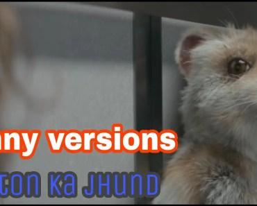 Maston ka jhund ! Hamster funny versions ! - maston ka jhund hamster funny versions