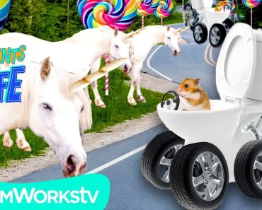 ROAD TRIP to UNICORN LAND | YOUR COMMENTS COME TO LIFE - road trip to unicorn land your comments come to life