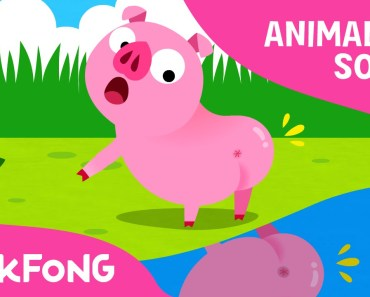 Did You Ever See My Tail? | Animal Songs | PINKFONG Songs for Children - did you ever see my tail animal songs pinkfong songs for children