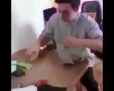 Funny hamster smash - funny hamster smash