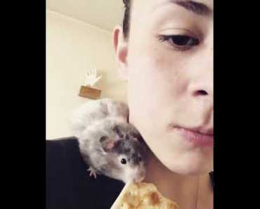 Girl eats a cracker with her hamster - girl eats a cracker with her hamster