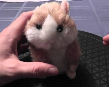 Mimicry The Talking Hamster - mimicry the talking hamster