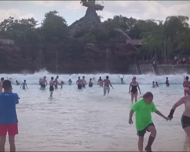 Wave Pool Typhoon Lagoon Walt Disney World Orlando, Florida 2015 YouTube - wave pool typhoon lagoon walt disney world orlando florida 2015 youtube