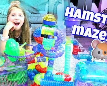 AMAZING HAMSTER MAZE! Setting up Hamster Cages and Tubes from CritterTrail Shopping at PetSmart - amazing hamster maze setting up hamster cages and tubes from crittertrail shopping at petsmart