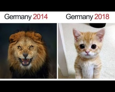 ONLY FIFA World Cup 2018 Fans Will Find It Funny - only fifa world cup 2018 fans will find it funny